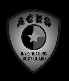 private investigator st peterburg fl